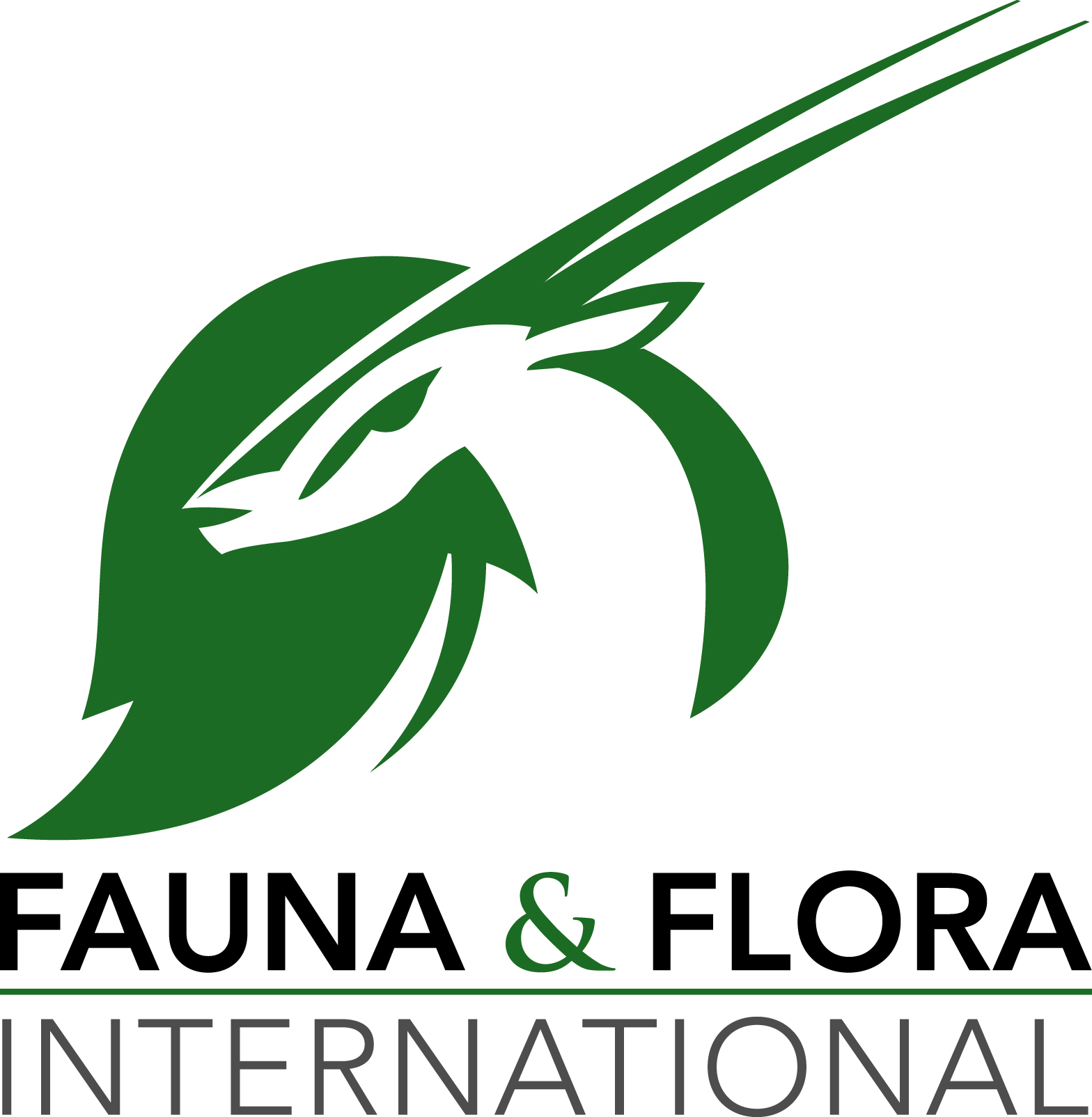 logo for Fauna  and  Flora International