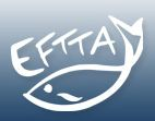 logo for European Fishing Tackle Trade Association