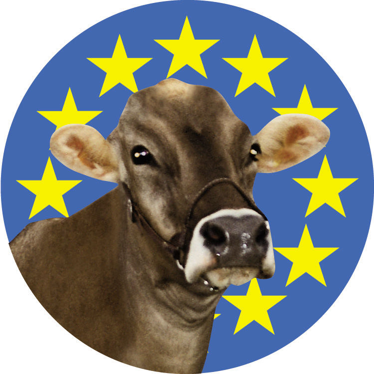 logo for European Brown Swiss Federation