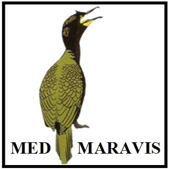 logo for Mediterranean Marine Bird Association