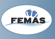 logo for Federation of European Maritime Associations of Surveyors and Consultants
