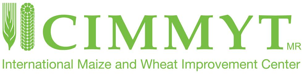 logo for International Maize and Wheat Improvement Center