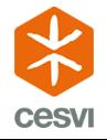logo for CESVI Fondazione