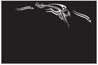 logo for International Institute for Asian Studies, Leiden