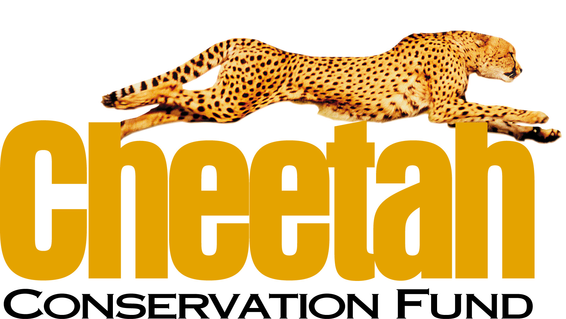 logo for Cheetah Conservation Fund