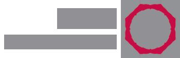 logo for Arab NGO Network for Development