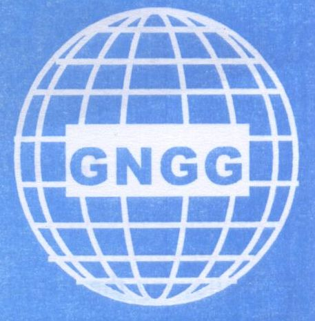 logo for Global Network for Good Governance